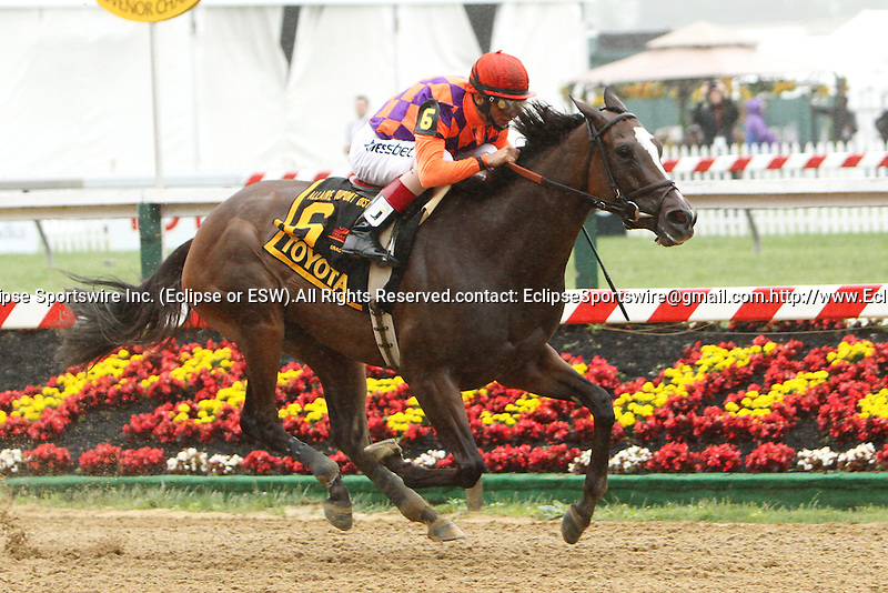 Summer Applause with John Velazquez win the 21st  running 0f the Grade III Allaire Dupont Distaff for fillies & mares, 3-year olds & up, going 1 1/16 mile, at Pimlico Race Course.  Trainer Chad Brown.  Owners **Gillian Campbell, Greenood Lodhe Farm Inc., Dan Clark & Greg Skoda