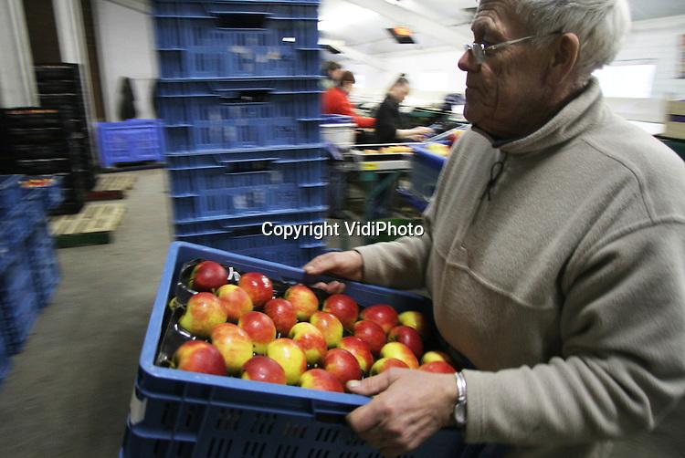 Foto: VidiPhoto..DODEWAARD - De laatste Elstar-appels rollen donderdag bij fruitteler Gebr. De Vree uit Dodewaard over de band. Op dit moment is het voor Nederlandse fruittelers goed verdienen met de rassen Elstar en Jonagold. De appels brengen na een jarenlange malaise in de fruitsector nu flink geld op door verminderd aanbod uit Polen en Duitsland. De consument zal daar naar verwachting niet zo veel van merken. De Vree is vrijwel door zijn 150 ton Elstar-appels heen. Wat resteert is nog een appeltje voor de dorst aan Jonagold (totaal 300 ton) en Conference (peren; 600 ton)..