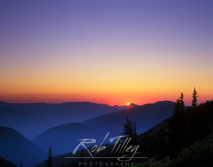 Sunset at Obstruction Point, Olympic NP, WA, USA