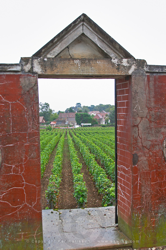 Domaine Philippe Livera, Gevrey Chambertin, Cote de Nuits, d'Or, Burgundy, France