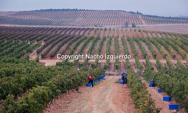 Bodegas Rio Negro,Cogolludo,Guadalajara