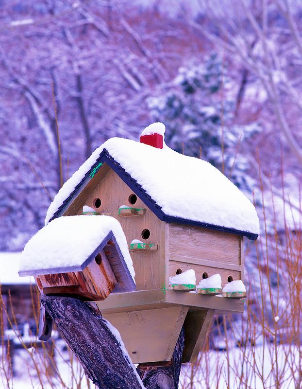 F00093M.tiff   Birdhouse with snow. Summer Lake Inn. Oregon