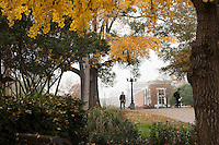 MSU Campus- Fall scenes - sidewalk near Carpenter<br />  (photo by Sarah Tewolde / &copy; Mississippi State University)