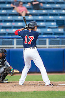 Bryan Hudson (17) of the Salem Red Sox at bat against the Lynchburg Hillcats at LewisGale Field at Salem Memorial Baseball Stadium on August 7, 2016 in Salem, Virginia.  The Red Sox defeated the Hillcats 11-2.  (Brian Westerholt/Four Seam Images)