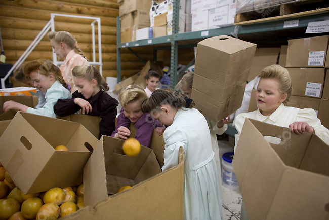 "Fundamentalist Mormon group F.L.D.S.,  Young girls sort boxes of grapefruit in the Storehouse on the ""Yearning for Zion"" compound in Eldorado, Texas, USA, February 12, 2009"