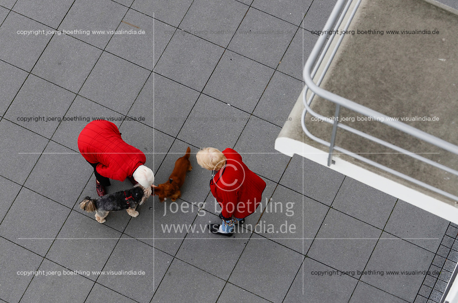 GERMANY, Dessau - Rosslau, Bauhaus, two ladies meet with dogs
