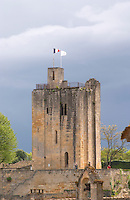 chateau du roi tower saint emilion bordeaux france