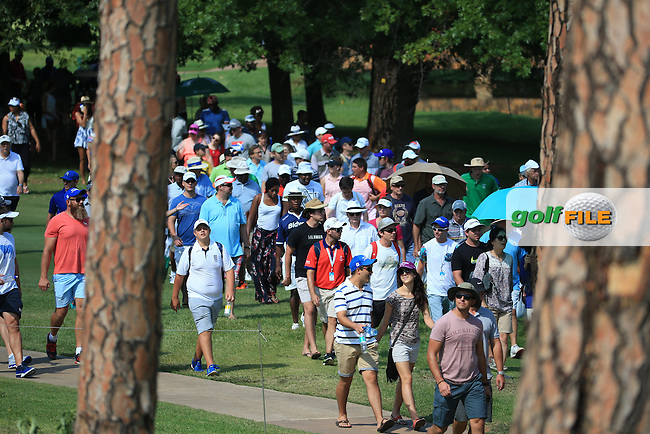 Gallery following the last match during the Final Round of the 2016 Tshwane Open, played at the Pretoria Country Club, Waterkloof, Pretoria, South Africa.  14/02/2016. Picture: Golffile | David Lloyd<br /> <br /> All photos usage must carry mandatory copyright credit (&copy; Golffile | David Lloyd)
