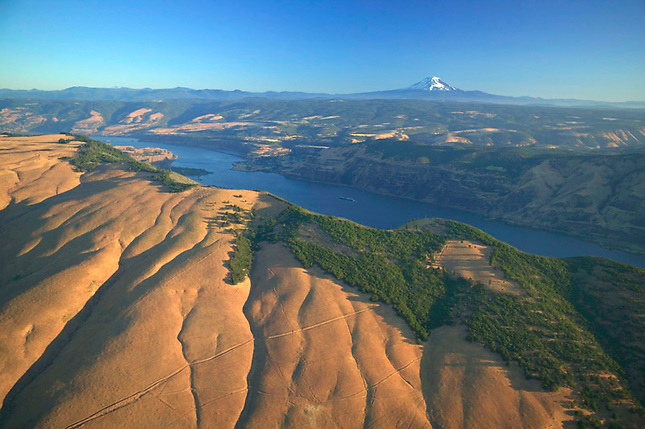 Overlooking Columbia River Gorge and Mt. Adams