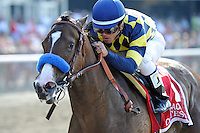 Contested (no. 1), ridden by Javier Castellano and trained by Bob Baffert, wins the  82nd running of the grade 1 Acorn Stakes for three year old fillies on May 28, 2012 at Belmont Park in Elmont, New York.  (Bob Mayberger/Eclipse Sportswire)