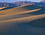 Death Valley National Park, CA<br /> Rippled patterns of parallel ridges of the Mesquite Flats sand dunes near Stove Pipe Wells, with the Grapevine Mountains in the distance