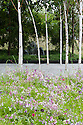 """Journey to Eco-Awakening Garden"", designed by Makoto Tanaka, RHS Hampton Court Flower Show 2009."