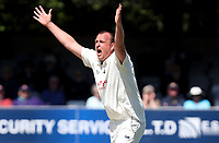 Luke Fletcher of Nottinghamshire appeals for a wicket during Essex CCC vs Nottinghamshire CCC, Specsavers County Championship Division 1 Cricket at The Cloudfm County Ground on 16th May 2019