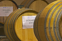 Oak barrels with signs Bonarda 2005 Bodega Del Anelo Winery, also called Finca Roja, Anelo Region, Neuquen, Patagonia, Argentina, South America