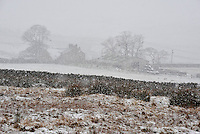Snow and farm near Botton Head, Lancashire between High Bentham and Slaidburn.