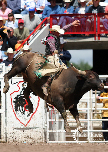 Bull Riding at Cheyenne Frontier Days