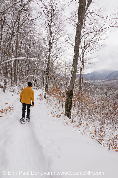 Snowshoeing along the Discovery Trail in Lincoln, New Hampshire USA, which is part of the White Mountain National Forest. The Discovery Trail is located along Kancamagus Highway.