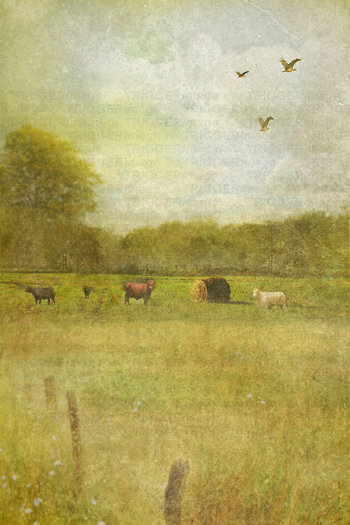 textured countryside scene with animals