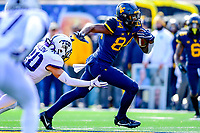 NCAA FOOTBALL: TCU at West Virginia