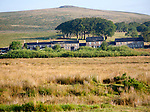 Bright sunny morning weather with a row of former miners terraced houses on moorland, Dartmoor national park, near Postbridge, Devon, England, UK