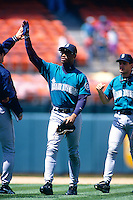 OAKLAND, CA - Ken Griffey Jr. of the Seattle Mariners high fives with his teammates after a game against the Oakland Athletics at the Oakland Coliseum in Oakland, California in 1994.  Photo by Brad Mangin