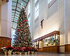 December 6, 2017; Christmas tree in Jordan Hall of Science (Photo by Matt Cashore/University of Notre Dame)