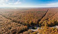 France, Allier (03), forêt de Tronçais, Isle-et-Bardais, forêt en automne au Rond Gardien (vue aérienne) // France, Allier, Tronçais forest, Isle et Bardais, forest in autumn at Rond Gardien (aerial view)