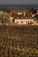 Europe/France/Bourgogne/21/Côte d'Or/Vosne-Romanée : le village et le vignoble