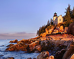 The Bass Harbor Head Light Bathed In Morning Light, Acadia National Park, Maine, USA