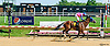 Time For Quality winning at Delaware Park on 6/8/16