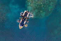 Luftaufnahme von Tinnie Drop in Lologhan Island, Russell Islands und Taucher, Salomonen, Salomonensee / Aerial View of Tinnie Drop in Lologhan Island, Russell Islands and scuba diver, Solomons, Solomon Sea