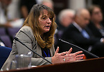 Nevada Assembly Minority Leader Marilyn Kirkpatrick, D-North Las Vegas, testifites in a committee hearing at the Legislative Building in Carson City, Nev., on Monday, March 30, 2015. <br /> Photo by Cathleen Allison