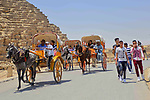 Egyptians ride horse carts in front of the Giza pyramids, on the third day of Eid al-Fitr holiday which marks the end of the Muslim holy month of Ramadan, in Cairo June 27, 2017. Photo by Amr Sayed