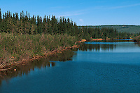 USA, Alaska, am  Chena-River bei Fairbanks