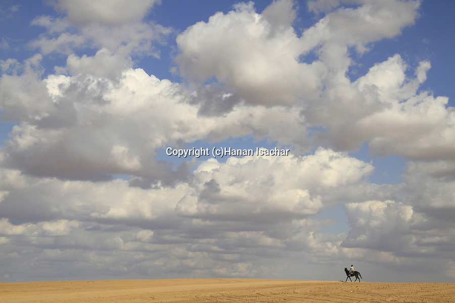 Israel, Horse rider in the Northern Negev