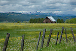 Idaho, West Central, New Meadows. A barn and spring pastures.