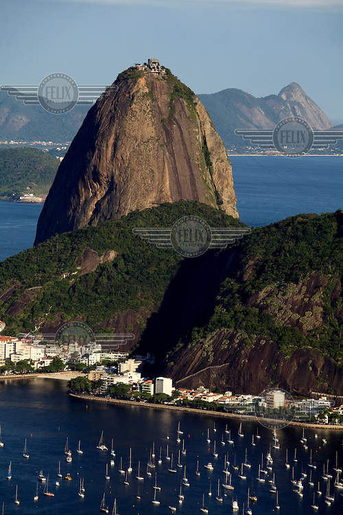 The iconic Sugar Loaf Mountain as seen from the Santa Marta viewpoint.