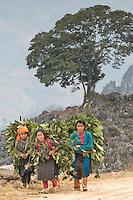"""Route vers le village de Khau Vai (marché des """"anciens amoureux"""" du mois de mars avril)."""