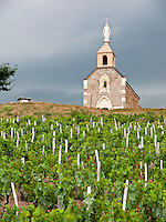 "France, FRA, Département Rhone, Beaujolais, Fleurie, 2009Jul23: The chapel ""La Madone"" stands above the renowned Beaujolais vineyards of Fleurie."