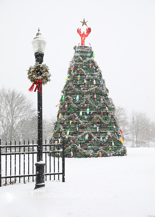 Lobster Trap Christmas Tree, Rockland  #S110