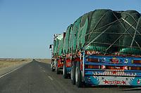 EGYPT, Farafra, truck transport potatos from desert farms to Cairo / AEGYPTEN, Farafra, LKW transportiert Kartoffeln aus Wuestenfarmen nach Kairo