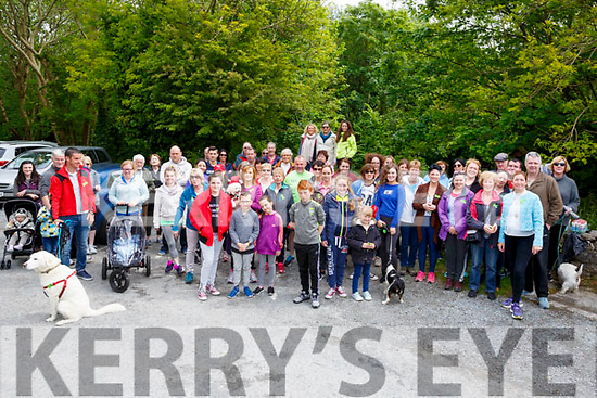 A great crowd supported the Walk & Talk walk through Ballyseedy Woods on Sunday