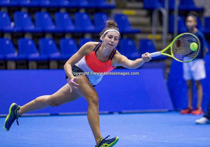 Rotterdam, Netherlands, December 16, 2017, Topsportcentrum, Ned. Loterij NK Tennis, Womans double final: Rosalie van der Hoek (NED) <br /> Photo: Tennisimages/Henk Koster