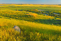Prairie grasslands at sunrise  (West Block) <br /> Grasslands National Park<br /> Saskatchewan<br /> Canada
