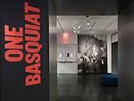 One Basquiat Installation Views