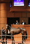 Hip 107 Love Theway Youare, sold for $1,450,000..November 05, 2012.