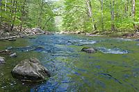 Ken Lockwood Gorge, south branch of the Raritan River,New Jersey Wildlife Management Area, Piedmont Region,  Hunterdon County, New Jersey