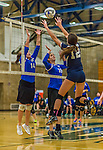 1 November 2015: Yeshiva University Maccabee Setter and Defensive Specialist Emily Rohan, a Senior from Dallas, TX, and Middle Blocker Gavriela Colton, a Junior from Teaneck, NJ, jump for a block against the Saint Joseph College Bears at SUNY Old Westbury in Old Westbury, NY. The Bears shut out the Maccabees 3-0 in NCAA women's volleyball, Skyline Conference play. Mandatory Credit: Ed Wolfstein Photo *** RAW (NEF) Image File Available ***