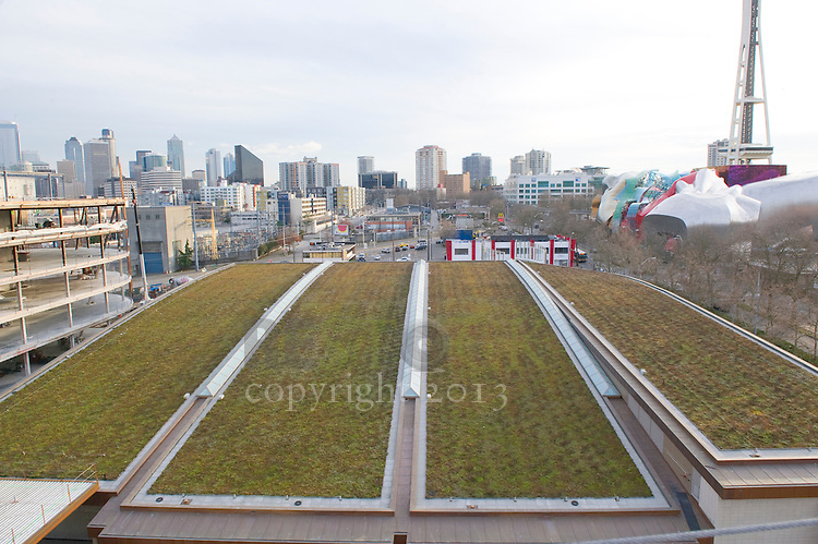 Green Roof and Seattle Skyline