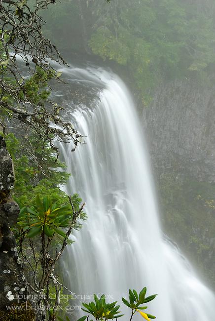 Salt Creek Falls, Willamette National Forest